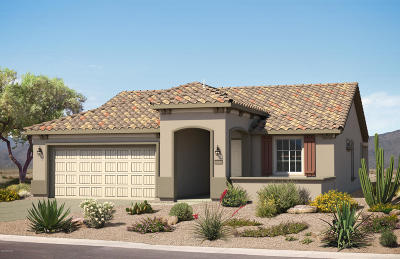 Marana Single Family Home For Sale: 7060 W Cliff Spring Trail N