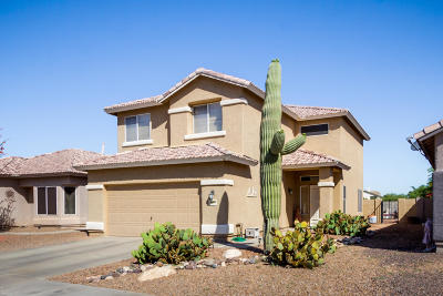 Tucson Single Family Home Active Contingent: 9411 N Painted Sky Drive