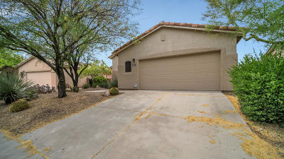 Tucson Single Family Home For Sale: 3613 N Banner Mine Drive