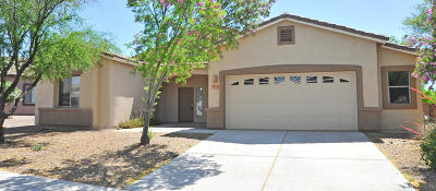 Marana Single Family Home For Sale: 12507 N Stone Ring Drive