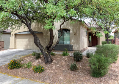 Tucson Single Family Home Active Contingent: 8626 N Shadow Wash Way