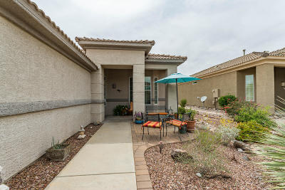 Marana Single Family Home Active Contingent: 13489 N Holly Grape Drive