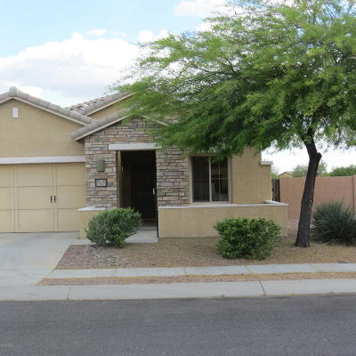 Oro Valley Single Family Home For Sale: 1135 W Montelupo Drive