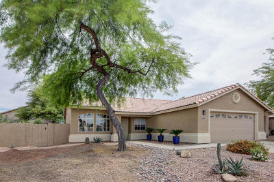 Tucson Single Family Home Active Contingent: 7555 W Summer Sky Drive