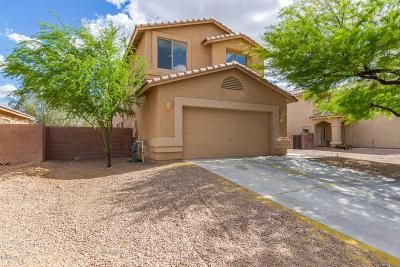 Marana Single Family Home For Sale: 11943 W Fontenelle Drive