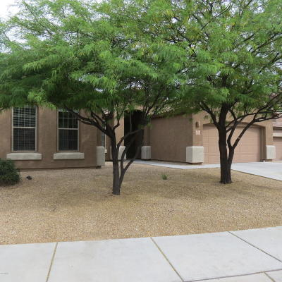 Marana Single Family Home Active Contingent: 12330 N Pathfinder Drive