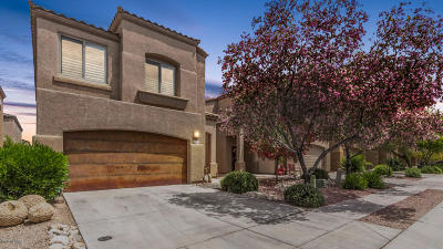 Tucson Single Family Home For Sale: 2256 W Floral Cliff Way