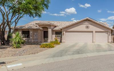 Tucson Single Family Home For Sale: 10695 E Haymarket Street