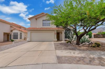 Tucson Single Family Home For Sale: 5681 N Verde Mountain Drive