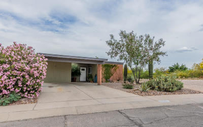 Tucson Single Family Home For Sale: 6907 N Northpoint Drive