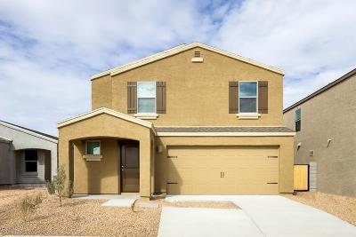 Pima County Single Family Home For Sale: 5980 S Tappen Drive