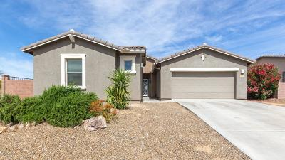 Oro Valley Single Family Home For Sale: 11847 N Prospect Point Place
