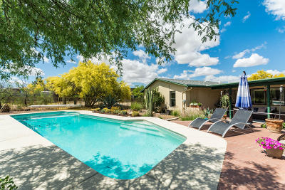 Single Family Home For Sale: 1791 S Calle Nopalito