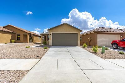 Tucson Single Family Home For Sale: 5119 S Dakota Vista Place #Lot 28