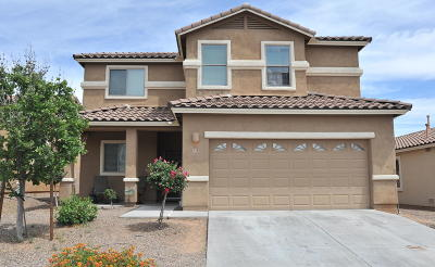 Sahuarita Single Family Home For Sale: 430 W Corte Planga