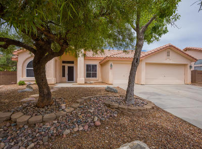Tucson Single Family Home For Sale: 3060 W Calle Lucinda