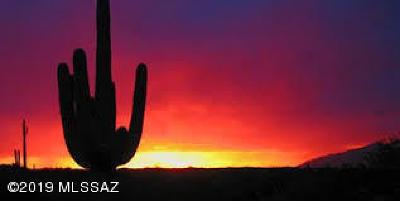 Tucson Residential Lots & Land For Sale: 6340 N Van Ark Road