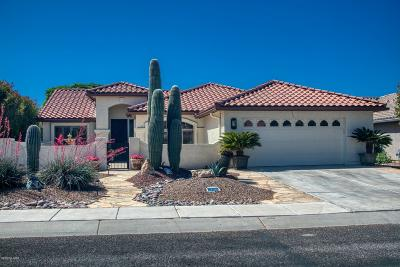 Green Valley Single Family Home Active Contingent: 2196 E Cypress Canyon Drive