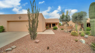 Tucson Single Family Home For Sale: 9260 N Moon View Place
