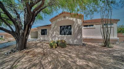 Green Valley Single Family Home Active Contingent: 1666 W Circulo De La Pinata