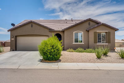 Marana Single Family Home For Sale: 11261 W Copper Field Street