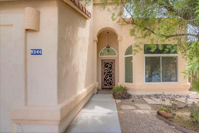 Tucson Single Family Home For Sale: 9344 N Eaglestone Loop