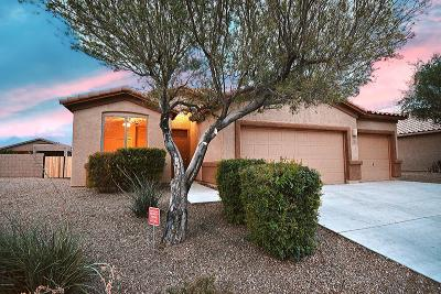 Marana Single Family Home Active Contingent: 13996 N Swift Spear Drive