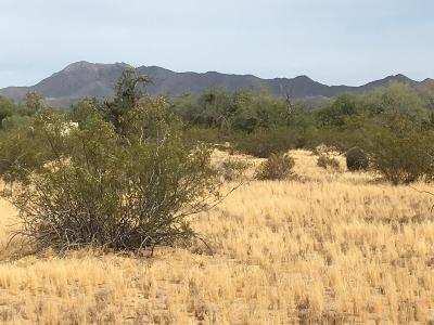 Tucson Residential Lots & Land For Sale: 12780 W Crystal Rose Lane #Lot3
