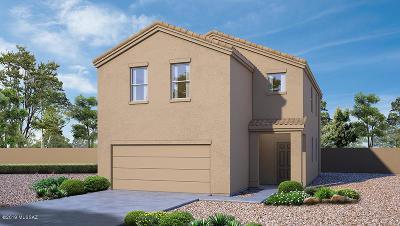 Pima County Single Family Home For Sale: 6530 S Diablo Drive S
