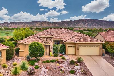 Oracle Single Family Home For Sale: 60681 E Arroyo Grande Drive