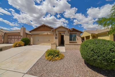 Oro Valley Single Family Home For Sale: 1228 W Versilia Drive