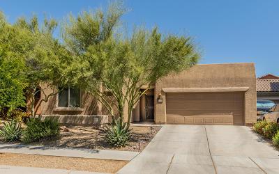Tucson Single Family Home For Sale: 10793 E Sanctuary Ridge Lane