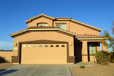 Marana Single Family Home For Sale: 13918 N Stone Palisade Drive
