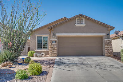 Sahuarita Single Family Home Active Contingent: 613 W Calle Media Luz