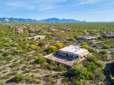 Pima County, Pinal County Single Family Home For Sale: 17071 S Rustling Leaf Trail