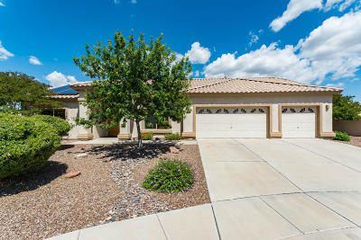 Oro Valley Single Family Home Active Contingent: 11384 N Cactus Rose Drive