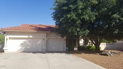 Cochise County Single Family Home For Sale: 3162 Gemstone Court