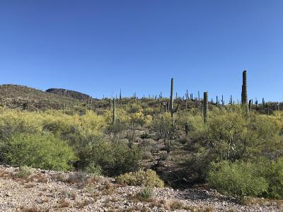 Residential Lots & Land For Sale: 3911 W Calle Don Miguel