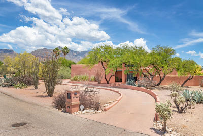 Tucson Single Family Home For Sale: 6140 N Calle De La Culebra