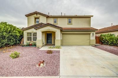 Single Family Home Active Contingent: 10886 S Camino San Clemente