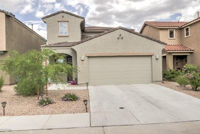 Sahuarita Single Family Home Active Contingent: 656 N Highlands Grove Lane