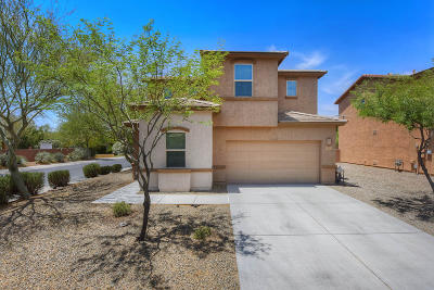 Marana Single Family Home For Sale: 12981 N Lea Maw Drive