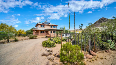 Tucson Single Family Home For Sale: 7715 N Cherokee Pony Trail