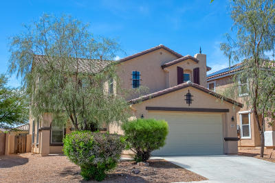 Sahuarita Single Family Home For Sale: 435 W Vuelta Friso