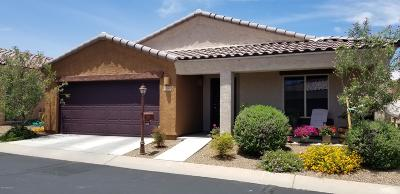 Sahuarita Single Family Home For Sale: 1166 W Calle Trio Los Panchos