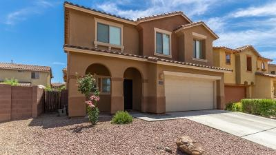 Tucson Single Family Home Active Contingent: 1669 W Green Thicket Way