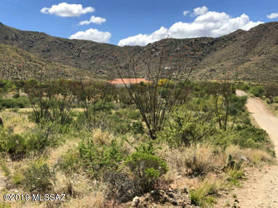 Vail Residential Lots & Land For Sale: 11120 E Camino Aurelia