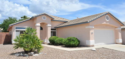 Tucson Single Family Home For Sale: 11132 N Eagle Crest Drive