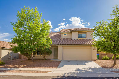 Pima County Single Family Home For Sale: 10691 N Shore Cliff Drive