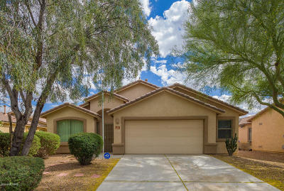 Marana Single Family Home For Sale: 11097 W Prairie Willow Drive